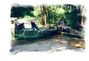 2000 - Kleines Staubecken