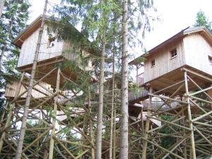 2009 - Baumhäuser