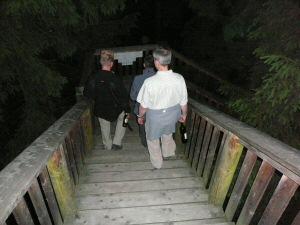 2009 - Letzter Abstieg vom Baumkronenweg