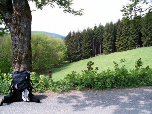 2006 - Ausblicke
