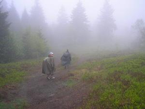 2006 - Abstieg kahler Asten