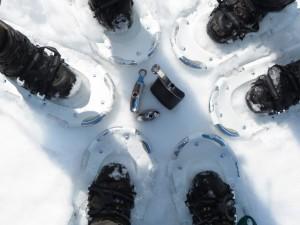 2015 - Stillleben im Schnee