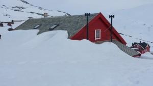 2015 - Auf dem Schnee