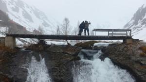 2015 - Brücke