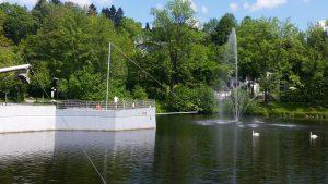Zurück am Kurparksee Grafenau