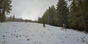 Aufstieg im Schnee